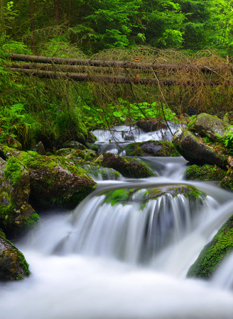 spruit: Waterfall in the national park Sumava-Czech Republic