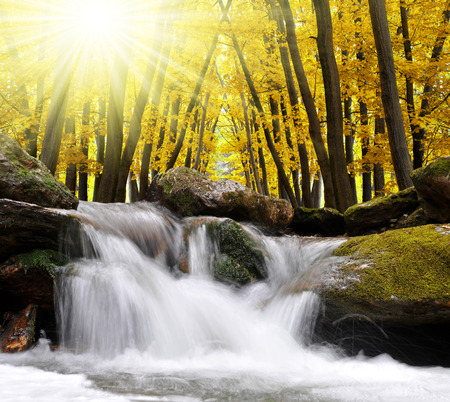 nant: Autumnal forest with waterfall in Czech Republic