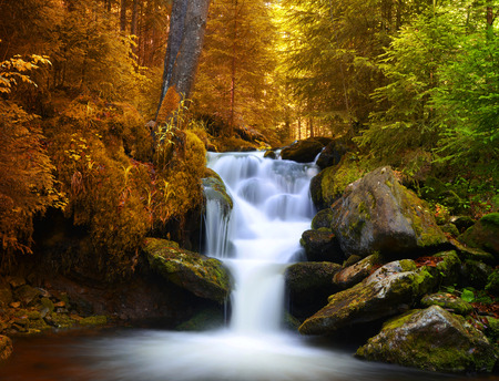 spruit: Autumnal forest with waterfall Stock Photo