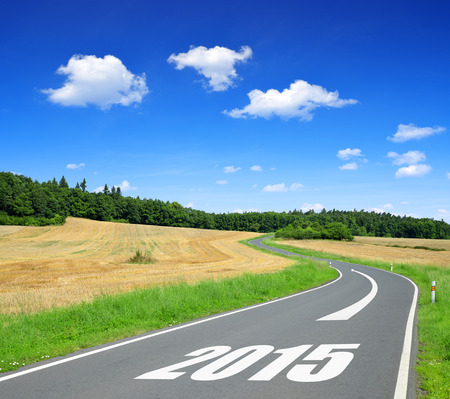 Asphalted road in sunny landscape .Forward to 2015 new year photo