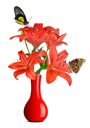Lily in red vase isolated on white background photo