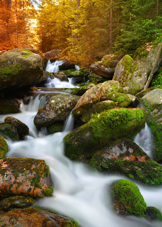 nant: Autumnal landscape with mountain creek in national park Sumava - Czech Republic