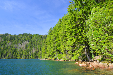 Black Lake, the Largest natural lake in the National park Sumava,Czech republic