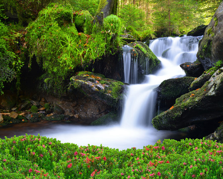 waterfall river: Waterfall in the national park Sumava-Czech Republic