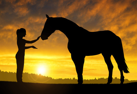 horses: girl with a horse at sunset Stock Photo