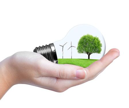ahorro energia: Bombilla de Eco con turbinas de viento y los árboles en la mano. Concepto de energía verde. Foto de archivo