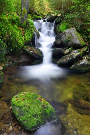 cataract falls: Waterfall in the national park Sumava-Czech Republic
