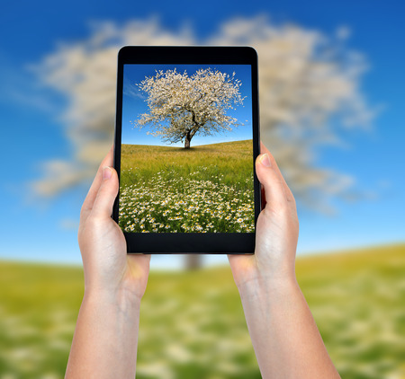 photo of a spring landscape in a tablet photo