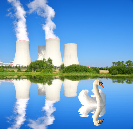 temelin: Swan on lake in the background nuclear power plant Temelin in Czech Republic Europe