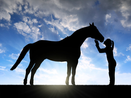horse love horse kiss animal love: Silhouette of a girl giving a kiss horse in sunset