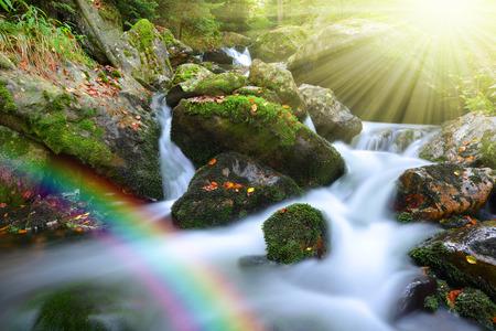 serene landscape: Mountain creek in the national park Sumava-Czech Republic
