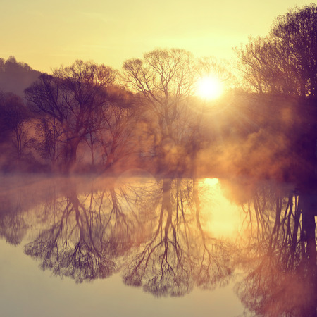 early summer: Sunrise over the pond
