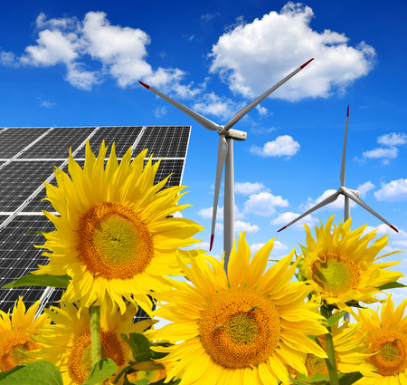 wind power plant: Solar energy panels with wind turbines in sunflower field. Green energy. Stock Photo
