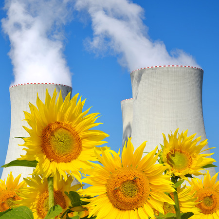 Nuclear waste: Sunflower field with nuclear power plant Stock Photo