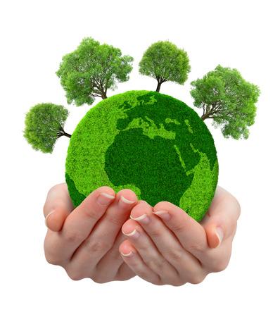 medio ambiente: planeta verde con árboles en las manos aisladas en el fondo blanco