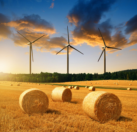 Straw bales on farmland and wind turbines at sunset