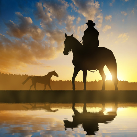 steed: Silhouette cowboy with horse in the sunset