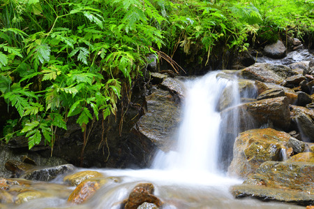 beck: Mountain creek in the Swiss Alps