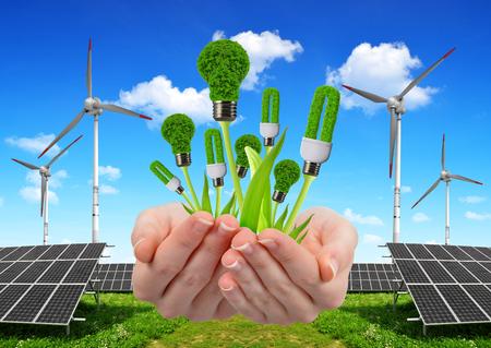 Mano que sostiene bombillas ecológicas. En el fondo los paneles de energía solar y turbinas eólicas. Concepto de energía limpia.