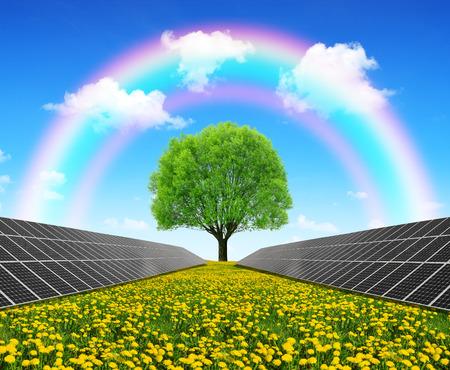 dandelion field: Solar energy panels and tree on dandelion field. Clean energy.
