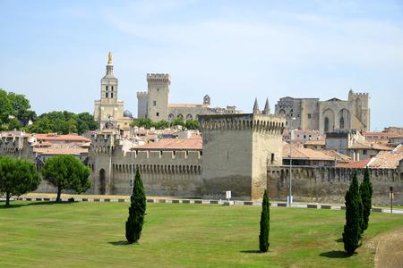 avignon: Cathedral Notre-Dame des Doms of Avignon, France Editorial