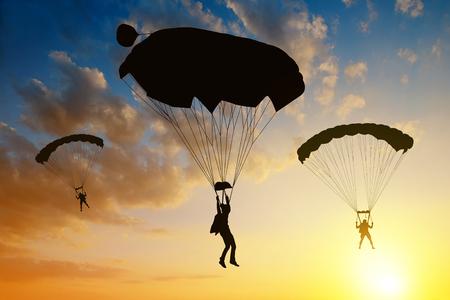 parachutist: Silhouette skydiver parachutist landing