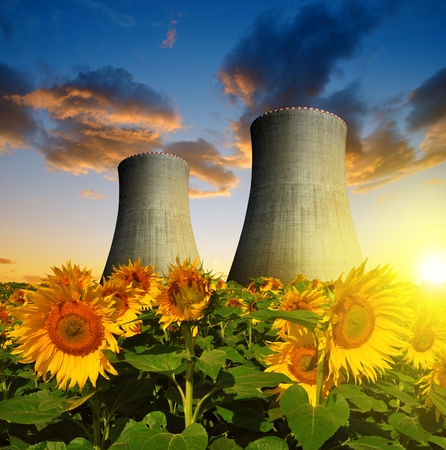 power plant: Nuclear power plant with sunflower field in the sunset