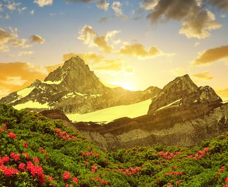 valais: Zinalrothorn in the sunset - Pennine alps, Switzerland