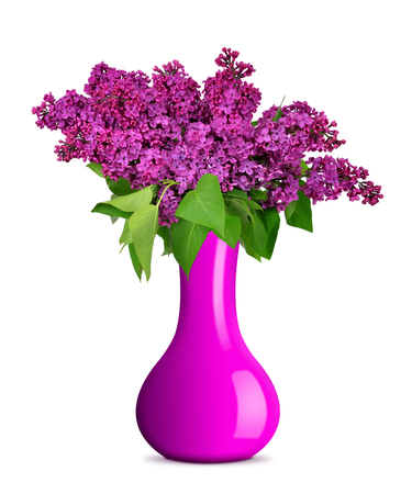 flowers in vase: Blooming lilac flowers in vase isolated on white background Stock Photo