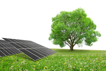 silicium: Solar energy panels with tree on meadow. Clean energy.