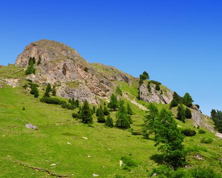 fassa: Summer mountain landscape in Italian Dolomites - Val di Fassa ,South Tyrol ,Italy