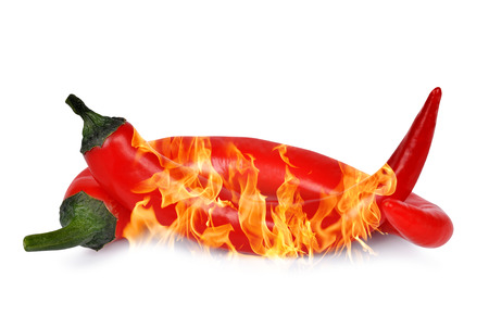 chilies: Burning red hot chili peppers isolated on white background
