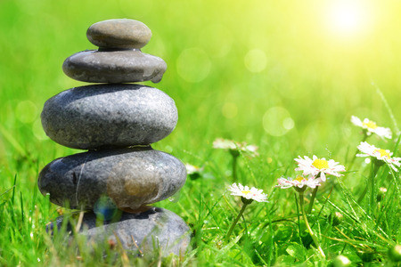 balance: Green grass with stones and daisies, soft focus. Spa concept Stock Photo