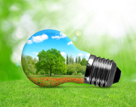 Eco bulb in grass. Environment or energy concept background.
