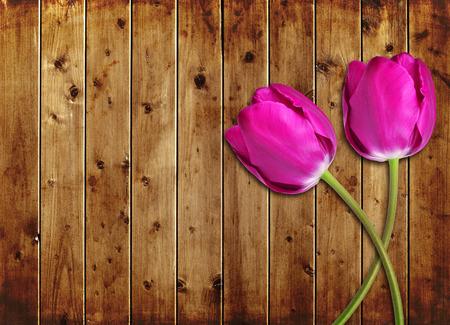 agradecimiento: Flor p�rpura de tulipanes en la tabla de madera.