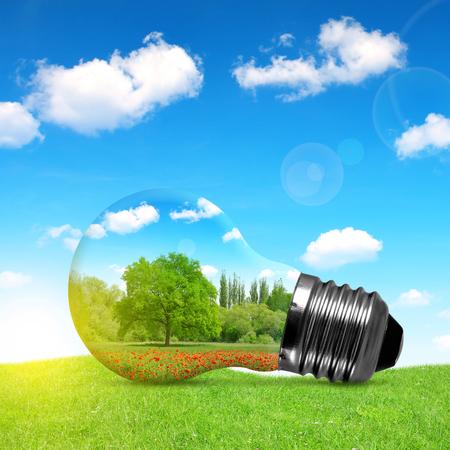 energia electrica: bombilla de Eco en la hierba. Medio ambiente o concepto de energía fondo. Foto de archivo