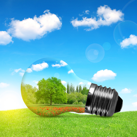 electric power: Eco bulb in grass. Environment or energy concept background.