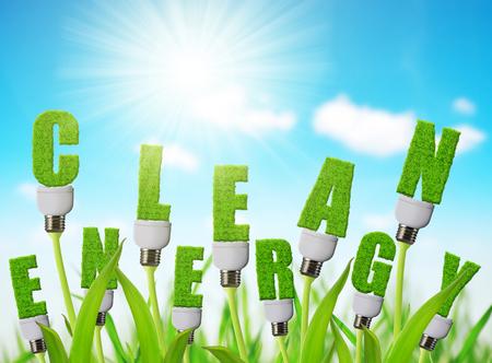 Bulbo di energia di Eco che cresce sulla pianta. Concetto di energia pulita.