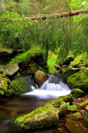 nant: Mountain creek in the National park Sumava-Czech Republic