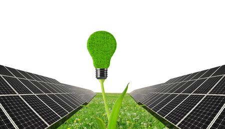Pannelli solari con lampadina sulla pianta. Energia pulita.