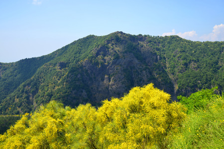 remnant: Mount Somma is the remnant of a large volcano, out of which the peak cone of Mount Vesuvius has grown. Province of Naples, in the Campania region, Italy.