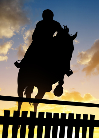 steed: Silhouette of a rider on a horse jumping over obstacle at sunset.