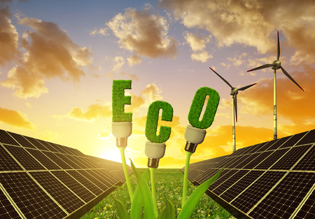 sustainable resources: Solar panels with light bulbs on plant against sunset sky. The concept of sustainable resources.