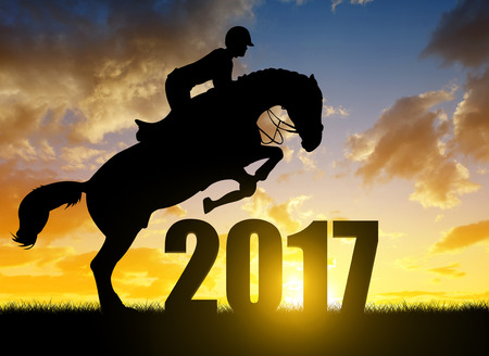jumping: The rider on the horse jumping into the New Year 2017