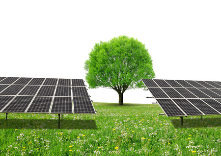 sustainable resources: Solar energy panels and tree on meadow with copy space. Sustainable resources. Stock Photo
