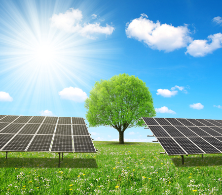 alternativ: Solar energy panels and tree on meadow. Sustainable resources.