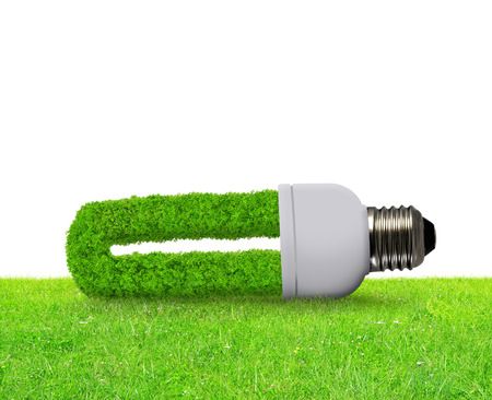 ecological environment: Eco light bulb in grass on white background - Green energy concept.