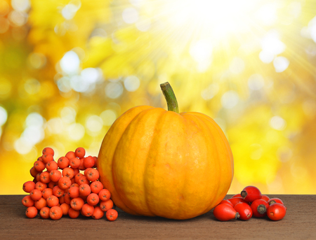 decoracion mesas: Yellow pumpkin with rose hips and rowan berry on wooden desk.