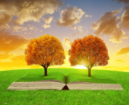 dream land: Book of nature with colorful autumn trees at sunset.
