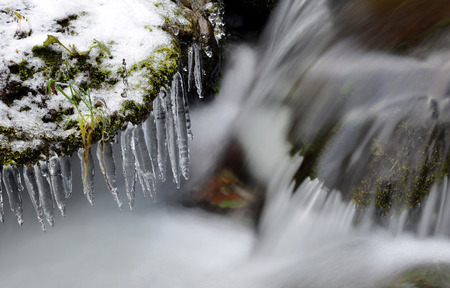 spruit: Winter creek with icicles in the national park Sumava,Czech Republic.